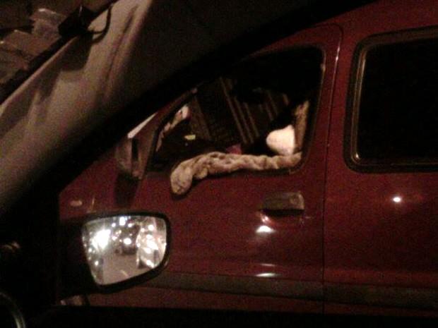Internauta flagra 'urso' dirigindo carro e bebendo no trânsito de Santos, SP (Foto: Débora Horvat/VC no G1)