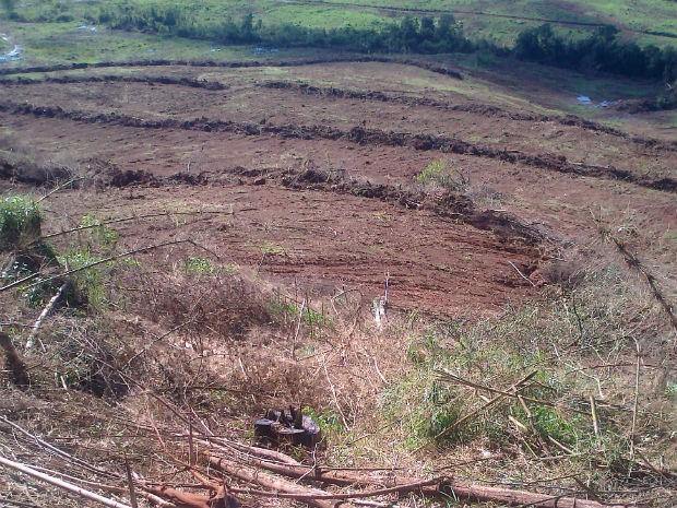 desmatamento serra da esperança (Foto: Divulgação / Polícia Militar Ambiental)