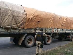 As estacas, que tinham cerca de três metros de comprimento cada, estavam sendo transportadas em um caminhão. (Foto: Divulgação/PRF)