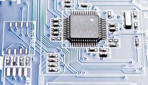 Chip (Foto: Shutterstock)