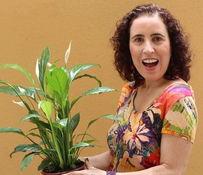 Nô Figueiredo recomenda adotar o Lírio da Paz como sua primeira planta (Foto: Divulgação)