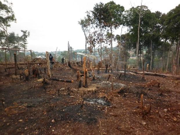 Ação da PM na manhã da última quinta-feira (11) conteve os ânimos dos invasores, que atearam fogo no local e mataram animais (Foto: Paulo Ivan/Semmas)