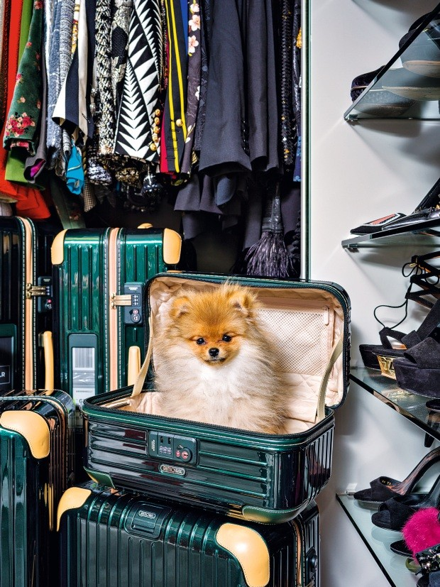 Lala Rudge revela seu apartamento em São Paulo (Foto: Christian Maldonado)