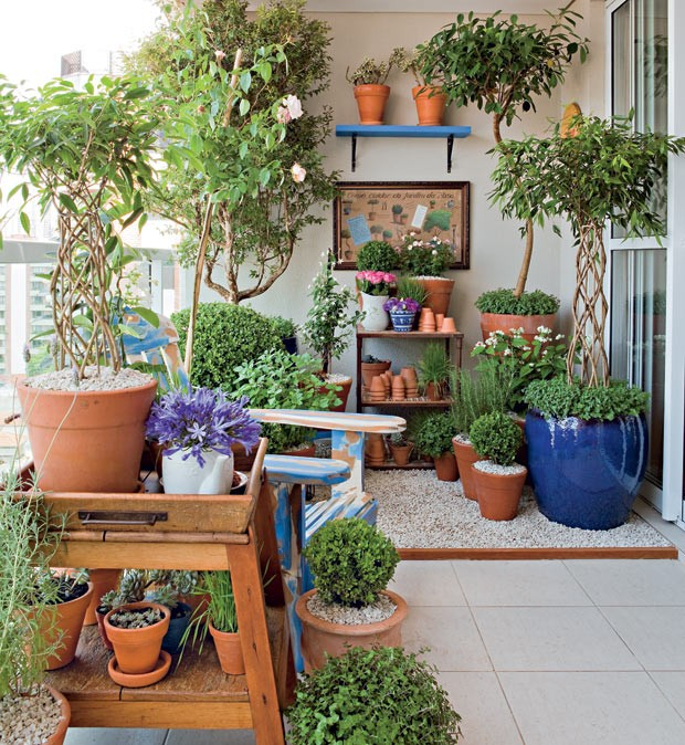 plantas-jardim-vasos (Foto: Edu Castello/Editora Globo)