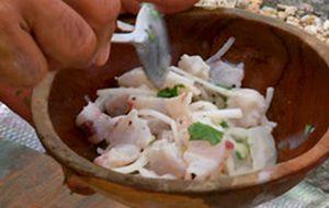 Ceviche de peixe com leite de coco e coentro