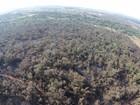 'Em chamas' e na seca, região sofreu prejuízos ao meio ambiente em 2014