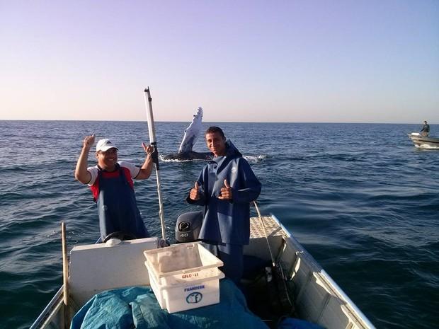 Pescadores tiraram foto em alto mar com baleia de fundo (Foto: Cícero Barbosa / Arquivo Pessoal)