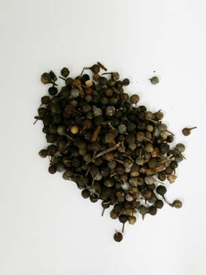 Pimenta-de-java possui substância que ajuda a evitar disfunção erétil (Foto: Márcio Luís Andrade e Silva)