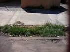 Internauta reclama de bueiro entupido em rua de Campo Grande