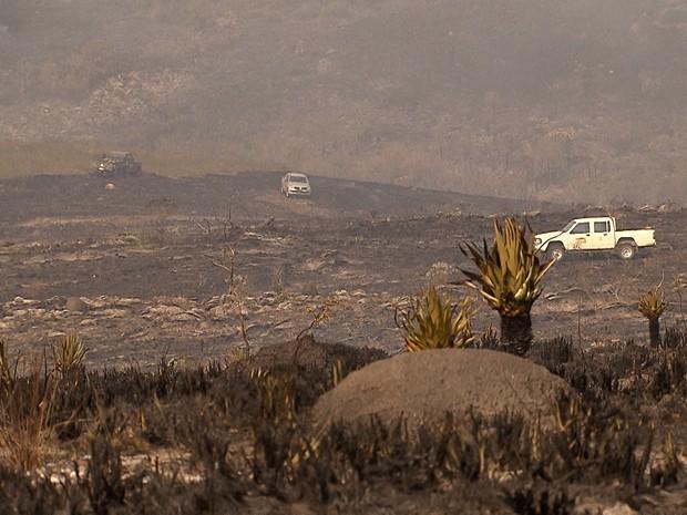 Ministra estima que incêndio atingiu 10% do Parque Nacional da Serra Cipó (Foto: Reprodução/TV Globo)