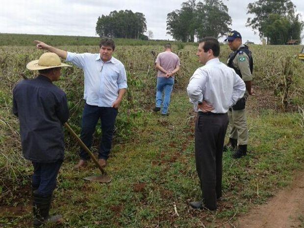 Fazendas de café da região de Marília foram fiscalizadas pelo MPT  (Foto: Fernando Degaspari/ TV TEM)