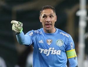 Fernando Prass Palmeiras (Foto: César Greco / Ag. Palmeiras / Divulgação)
