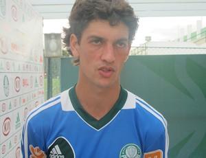 Fernandinho Palmeiras fernandinho palmeiras (Foto: Diego Ribeiro / Globoesporte.com)