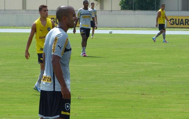 Julio Cesar botafogo treino (Foto: Vicente Seda)