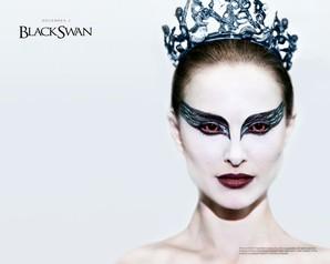 wallpaper black swan