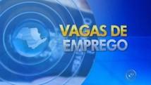 Loja de departamentos abre 200 vagas de emprego  (Reprodução/TV TEM)