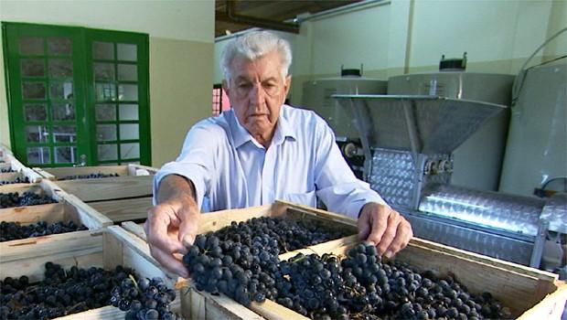 Produtores começaram a produzir vinhos finos (Foto: Reprodução EPTV)