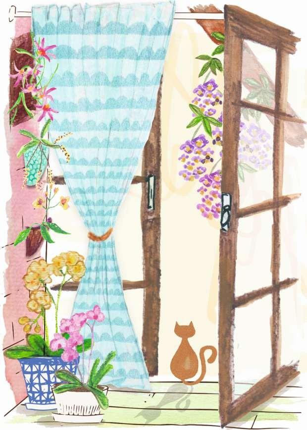 Ilustração de orquídeas (Foto: Patrícia Sodré/Editora Globo)