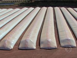 Produtores usam silos bag para armazenar milho em MS (Foto: Reprodução/TV Morena)
