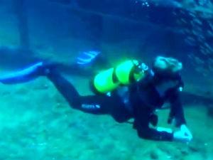 Grupo de mergulhadores exploram o oceano em AL  (Foto: Reprodução/TV Gazeta)