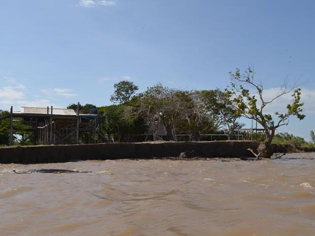 Correnteza do rio bate com força nas margens e destroi o solo. (Foto: Karla Lima/G1)