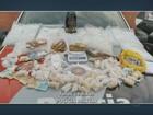 Homem é preso por tráfico de drogas com R$ 18 mil em bar de Campinas