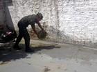 Exército, FAB, bombeiros e agentes buscam focos do Aedes em Macapá