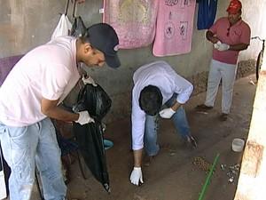 Animais resgatados em Veríssimo (Foto: Reprodução/TV Integração)