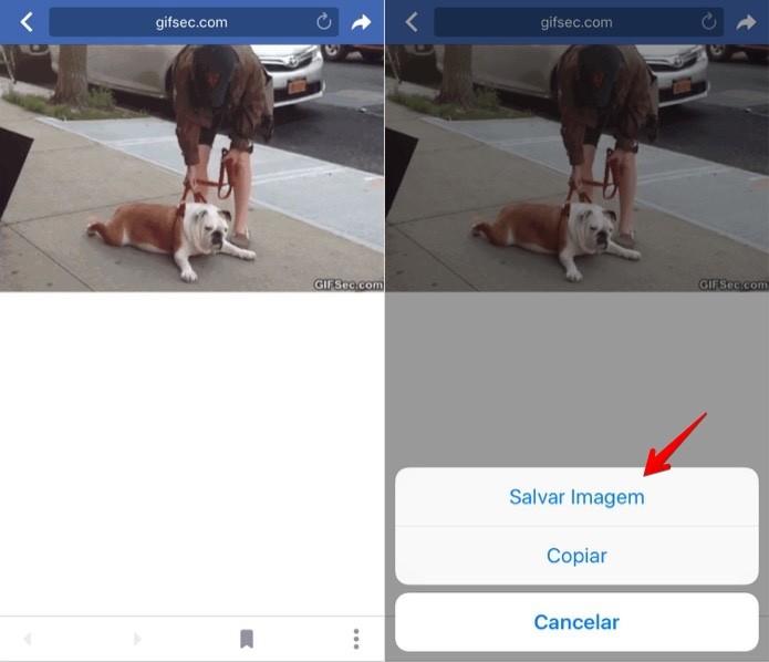 Salvando imagem GIF no celular (Foto: Reprodução/Helito Bijora)