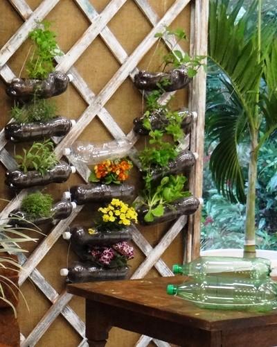 jardim vertical latas: ensina montar jardim vertical – notícias em O programa – Mais Você