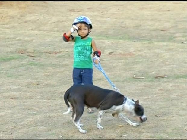Criança brinca com pit bull em encontro (Foto: Reprodução/TV Anhanguera)