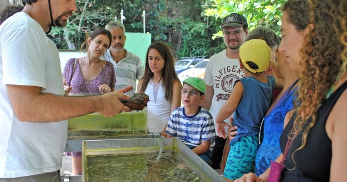 Cebimar tem programa de visitação para turistas em São Sebastião ... - Globo.com