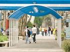 PUC-PR recebe inscrições para o Vestibular de Inverno até 30 de maio