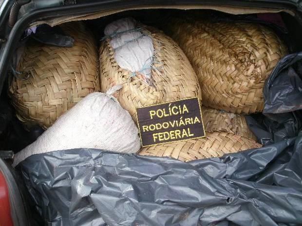 Policiais apreenderam camarão salgado que estavam sendo transportado ilegalmente no Pará. PRF (Foto: Divulgação/ PRF)