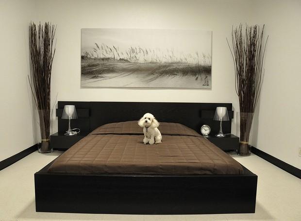 Hotel de luxo para cachorros (Foto: Reprodução/Overland Pet Express)