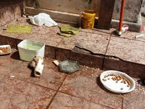Animais ficavam em meia a muita sujeira (Foto: Adolfo Lima / TV TEM)