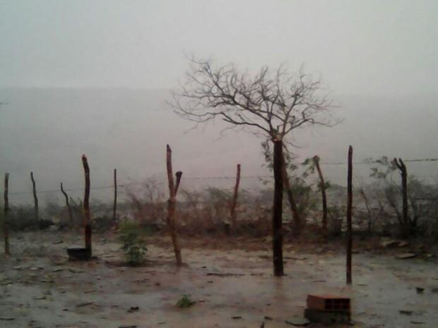 Chuva alivia seca no Sertão de Sergipe (Foto: Humberto Diniz)