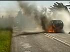 Viatura da Polícia Civil pega fogo após colisão com caminhão em Boracéia
