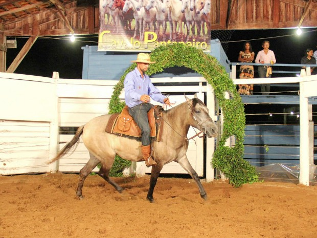 Prova com cavalo pantaneiro será uma das atrações da Feapan em 2015 (Foto: Divulgação/Sindicato Rural de Corumbá)