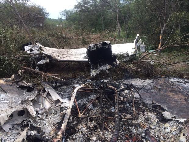 Avião monotor que caiu seguia para pista clandestina (Foto: Polícia Civil / Divulgação)