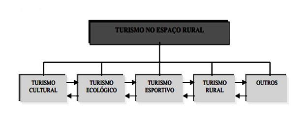 Esquema com definição de turismo rural (Foto: Colégio Qi)