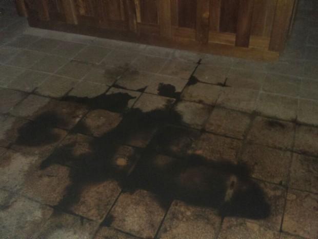 whatsapp_image_2016-09-23_at_15.39.44 Catedral tombada como patrimônio histórico está infestada por morcegos Notícias Pragas