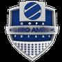 Veja o regulamento completo da competição (Divulgação/TVCA)