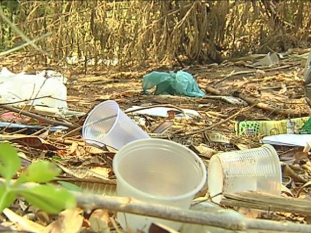 Terrenos e quintais sujos aumentam proliferação da dengue (Foto: Reprodução/TV TEM)