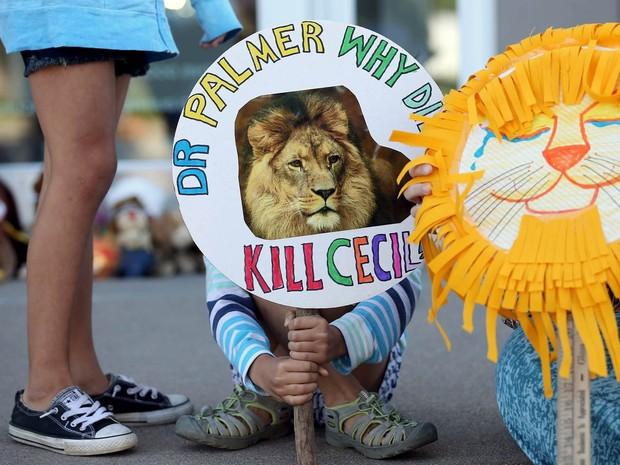 Piper Hoppe, de 10 anos, mostra uma placa com a foto do leão Cecil, símbolo do Zimbábue, durante protesto em Bloomington, Minnesota (EUA). O ato foi contra a morte do felino, caçado por um dentista da cidade de Bloomington que pagou US$ 50 mil pelo safari (Foto: Eric Miller/Reuters)