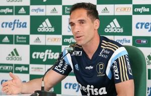 Fernando Prass Palmeiras (Foto: Cesar Greco / Ag. Palmeiras / Divulgação)