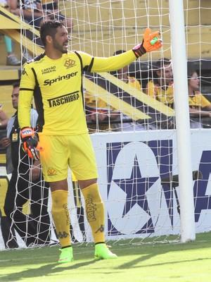 Luiz Criciúma goleiro (Foto: Fernando Ribeiro / Criciúma EC)