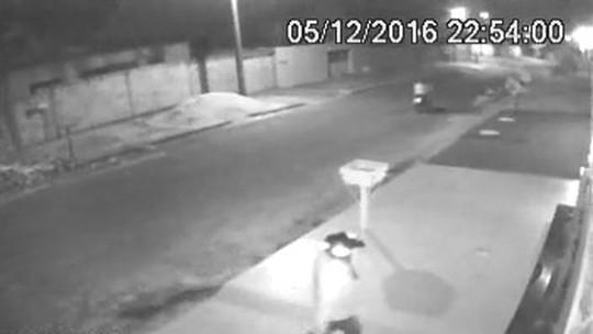 Dupla é flagrada furtando planta na calçada de casa, em Goiás; vídeo