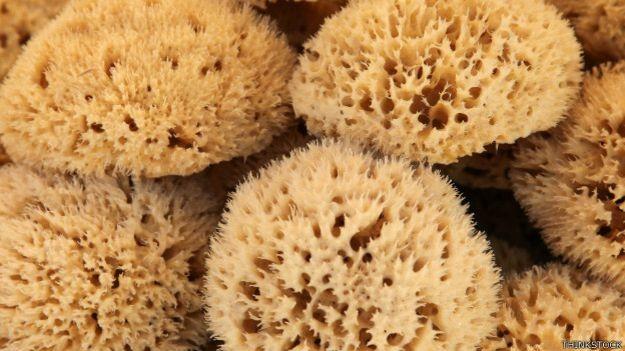 Esponjas usadas para a menstruação devem ser desinfetadas, lavadas e secas antes de serem vendidas (Foto: Thinkstock/BBC)