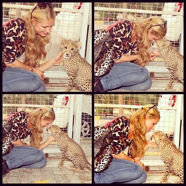 Paris Hilton com leopardo (Foto: Reprodução/Instagram)